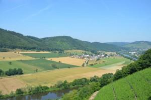 Weinberge und Saarblick oberhalb vom Weingut Saarstein (Foto: Thomas Köster)
